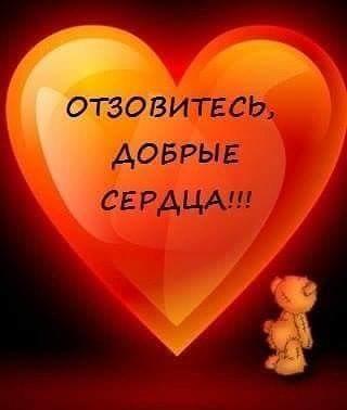добрые сердца.jpg
